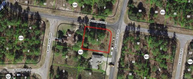 7292 N Gibralter Drive, Citrus Springs, FL 34434 (MLS #800234) :: Plantation Realty Inc.