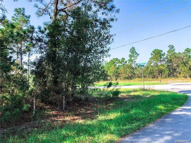 1 Black Willow Street, Homosassa, FL 34446 (MLS #800243) :: Plantation Realty Inc.
