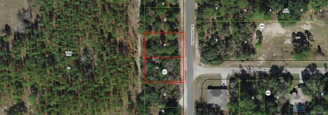 9046 & 9030 N Paradisea Drive, Citrus Springs, FL 34433 (MLS #800272) :: Plantation Realty Inc.