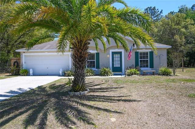 8151 N Dyke Way, Citrus Springs, FL 34434 (MLS #800294) :: Plantation Realty Inc.