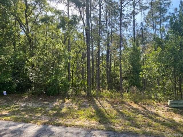17 Waxmyrtle Court, Homosassa, FL 34446 (MLS #800304) :: Plantation Realty Inc.