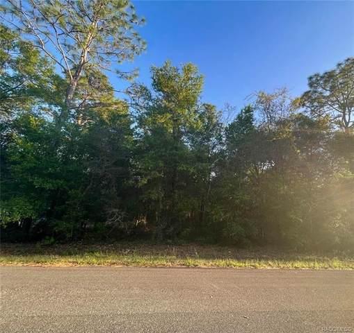 3256 E May Street, Inverness, FL 34453 (MLS #800306) :: Plantation Realty Inc.