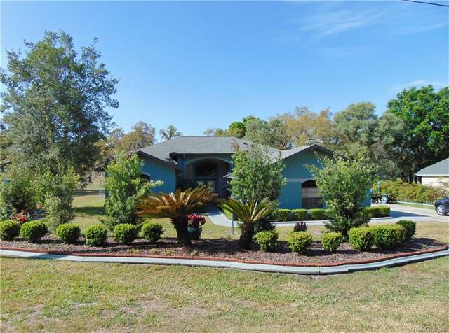 8360 N Pinnacle Drive, Citrus Springs, FL 34434 (MLS #800307) :: Plantation Realty Inc.