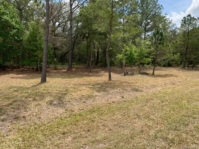 10031 N Dawnflower Avenue, Crystal River, FL 34428 (MLS #800321) :: Plantation Realty Inc.
