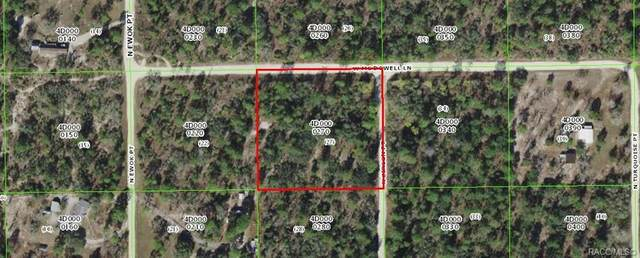 6730 N Zircon Point, Dunnellon, FL 34433 (MLS #800330) :: Plantation Realty Inc.