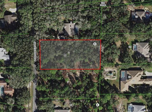 4029 N Indianhead Road, Hernando, FL 34442 (MLS #800338) :: Plantation Realty Inc.