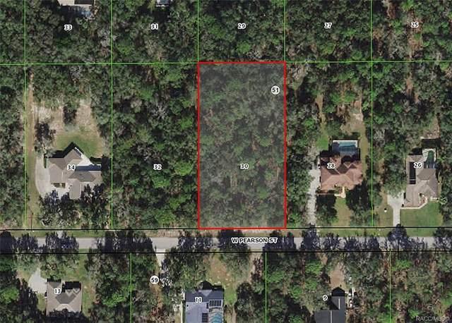 859 W Pearson Street, Hernando, FL 34442 (MLS #800339) :: Plantation Realty Inc.