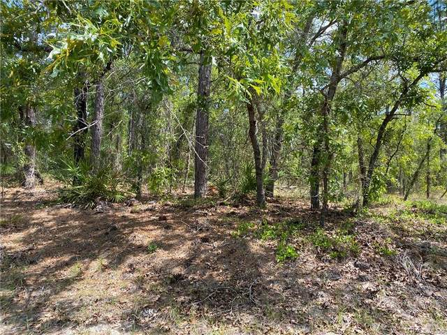 27 Pagoda Drive, Homosassa, FL 34446 (MLS #800349) :: Dalton Wade Real Estate Group