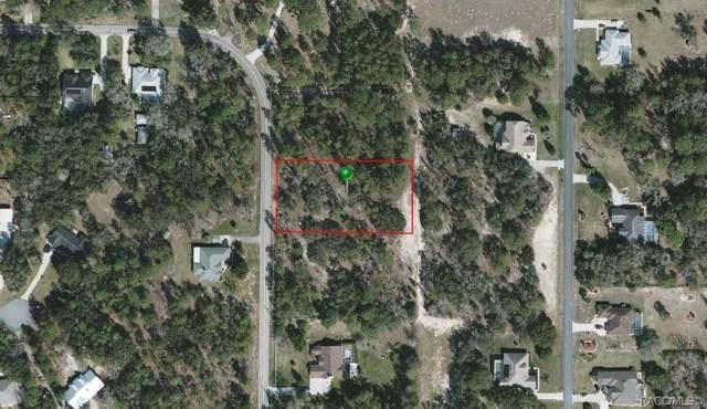 869 N Kensington Avenue, Lecanto, FL 34461 (MLS #800363) :: Dalton Wade Real Estate Group