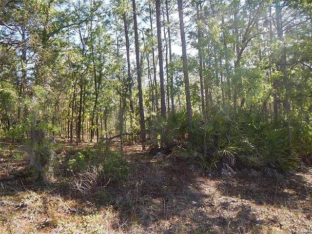 2613 W Begonia Drive, Beverly Hills, FL 34465 (MLS #800386) :: Plantation Realty Inc.