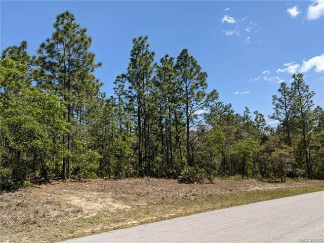 4473 N Saddle Drive, Beverly Hills, FL 34465 (MLS #800394) :: Plantation Realty Inc.