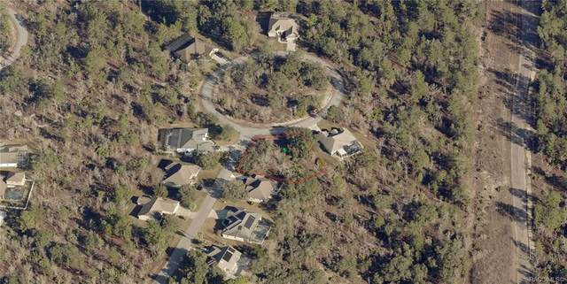 33 Dahlia Court N, Homosassa, FL 34446 (MLS #800396) :: Dalton Wade Real Estate Group