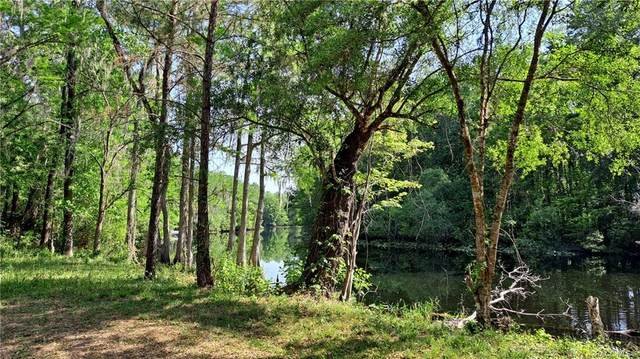 10655 N Wise Owl Point, Dunnellon, FL 34434 (MLS #800413) :: Plantation Realty Inc.