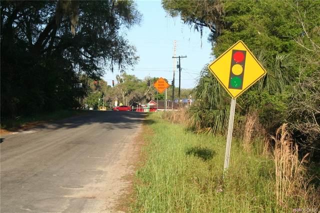 4541 SE 95th Street, Ocala, FL 34480 (MLS #800473) :: Plantation Realty Inc.
