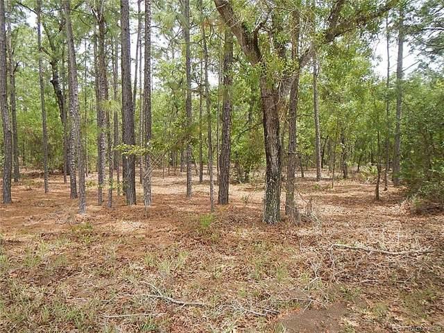 4425 N Camwood Terrace, Beverly Hills, FL 34465 (MLS #800504) :: Plantation Realty Inc.