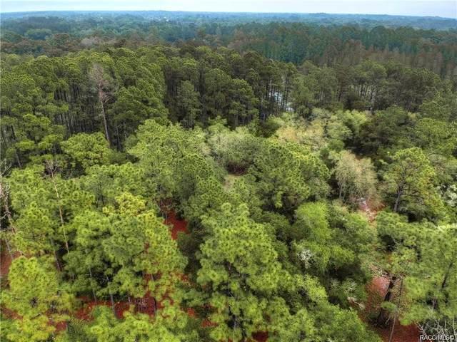 12161 N Lake Garden Drive, Dunnellon, FL 34434 (MLS #800617) :: Plantation Realty Inc.