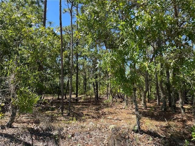 5461 W Pine Ridge Boulevard, Beverly Hills, FL 34465 (MLS #800663) :: Plantation Realty Inc.