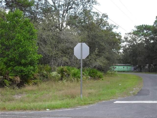6645 W Erlen Lane, Homosassa, FL 34446 (MLS #800709) :: Plantation Realty Inc.