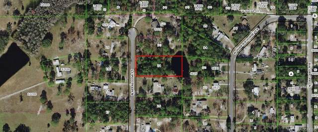 3175 N Appaloosa Pt Point, Crystal River, FL 34428 (MLS #800807) :: Plantation Realty Inc.