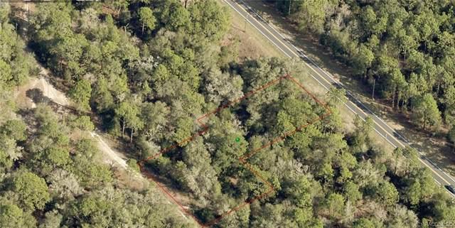 7451 W Dunnellon Road, Dunnellon, FL 34433 (MLS #800836) :: Plantation Realty Inc.
