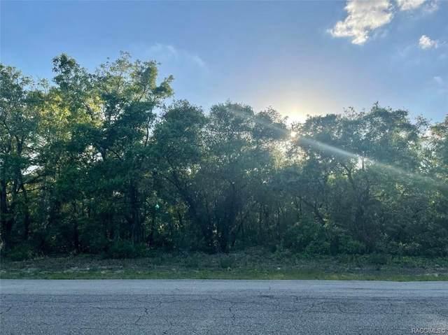 2304 N Trample Terrace, Beverly Hills, FL 34465 (MLS #800875) :: Plantation Realty Inc.