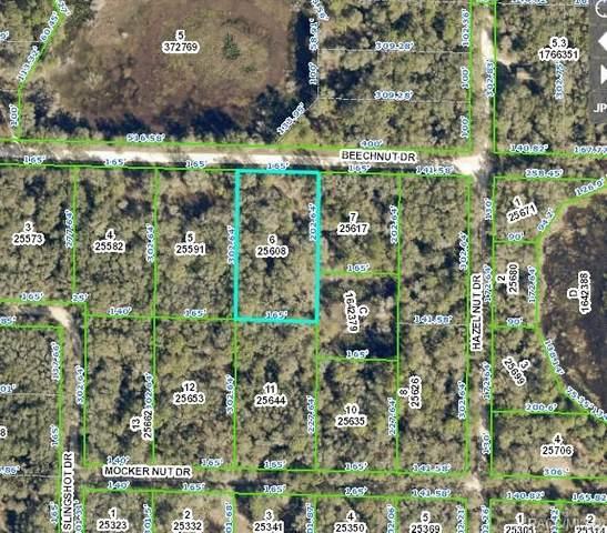 00 Beechnut Drive, Webster, FL 33597 (MLS #800920) :: Plantation Realty Inc.