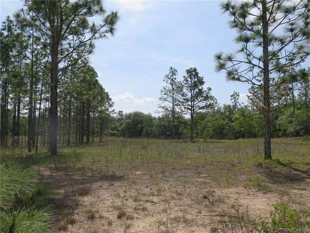 4149 N Millstone Point, Beverly Hills, FL 34465 (MLS #800943) :: Plantation Realty Inc.