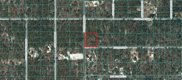 00 SW Papaya Lane, Dunnellon, FL 34431 (MLS #800947) :: Plantation Realty Inc.