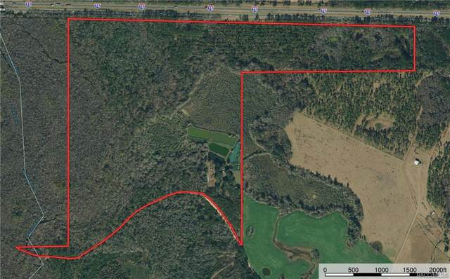 271 SW Seven Bridges Road, Madison, FL 32331 (MLS #800969) :: Plantation Realty Inc.