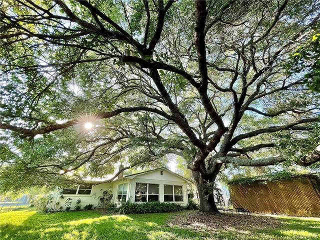7 Palm Drive, Yankeetown, FL 34498 (MLS #800987) :: Plantation Realty Inc.