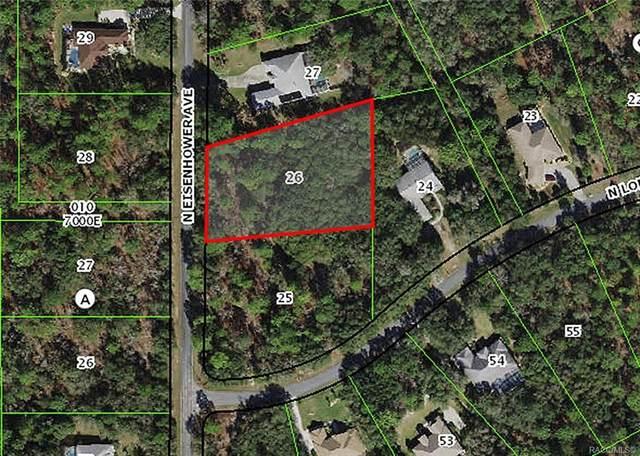 3913 N Eisenhower Avenue, Hernando, FL 34442 (MLS #800989) :: Plantation Realty Inc.