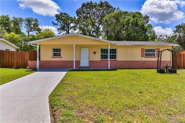 61 S Lee Street, Beverly Hills, FL 34465 (MLS #801051) :: Plantation Realty Inc.