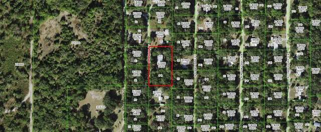 11365 N Parasol Point, Inglis, FL 34449 (MLS #801054) :: Plantation Realty Inc.
