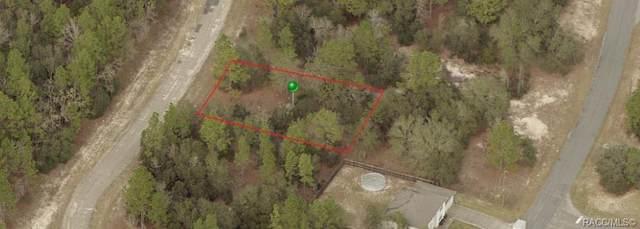 5911 N Matheson Drive, Citrus Springs, FL 34434 (MLS #801100) :: Plantation Realty Inc.
