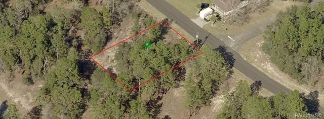 3264 W Camilo Drive, Citrus Springs, FL 34433 (MLS #801101) :: Plantation Realty Inc.