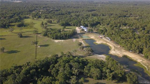 10249 W Vida Court, Crystal River, FL 34428 (MLS #801157) :: Plantation Realty Inc.