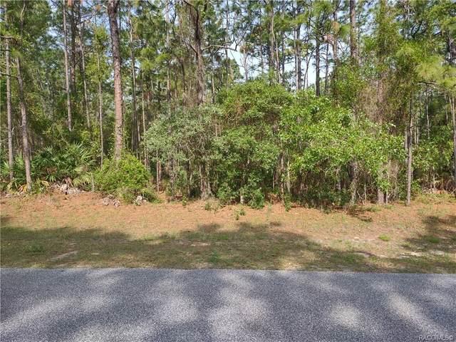 5356 N Buffalo Drive, Beverly Hills, FL 34465 (MLS #801159) :: Plantation Realty Inc.