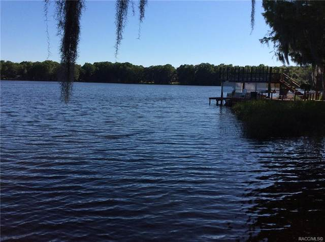 8702 E Moonrise Lane, Floral City, FL 34436 (MLS #801172) :: Plantation Realty Inc.