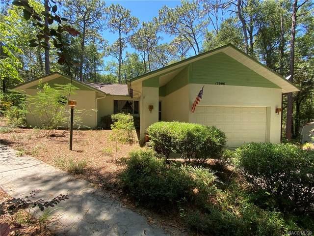 12006 S Hyacinth Point, Floral City, FL 34436 (MLS #801265) :: Plantation Realty Inc.