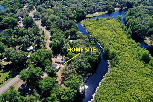 5450 S Withlapopka Drive, Floral City, FL 34436 (MLS #801284) :: Plantation Realty Inc.