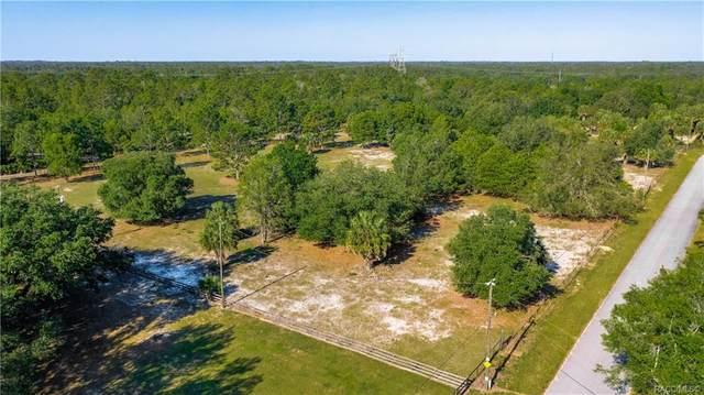 6670 N Paraqua Circle, Crystal River, FL 34428 (MLS #801287) :: Plantation Realty Inc.