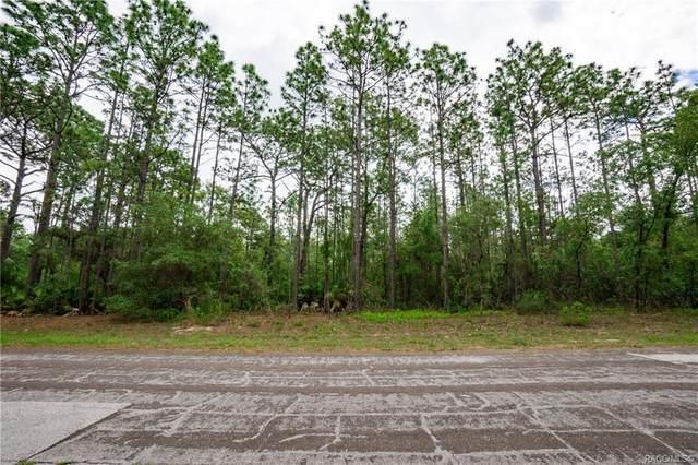 4677 N Saddle Drive, Beverly Hills, FL 34465 (MLS #801334) :: Plantation Realty Inc.