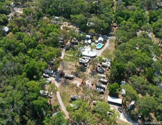 41 Cattail Lane, Yankeetown, FL 34498 (MLS #801357) :: Plantation Realty Inc.