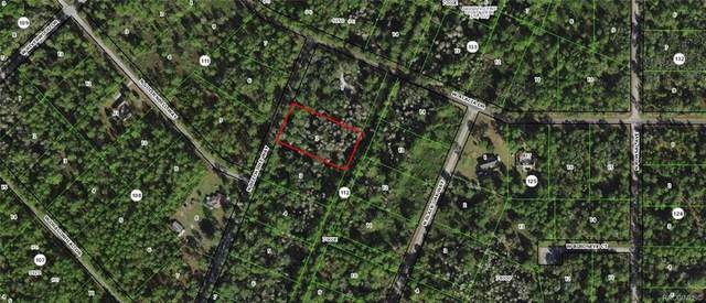 9453 N Beechtree Way, Crystal River, FL 34428 (MLS #801377) :: Plantation Realty Inc.
