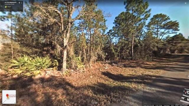 10175 W Shamrock Place, Crystal River, FL 34428 (MLS #801380) :: Plantation Realty Inc.
