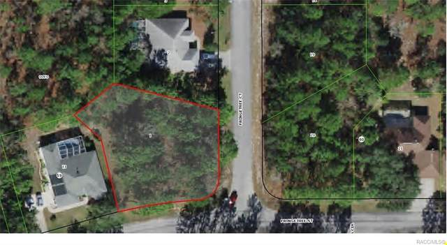 2 Fringetree Court, Homosassa, FL 34446 (MLS #801382) :: Plantation Realty Inc.
