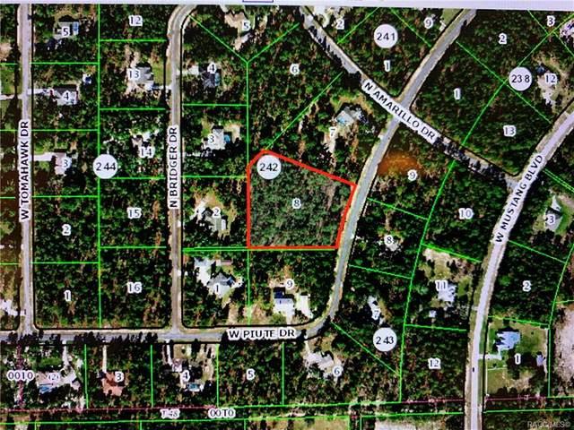 4417 W Piute Drive, Beverly Hills, FL 34465 (MLS #801390) :: Plantation Realty Inc.