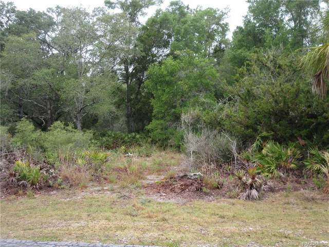 10128 N Twinflower Terrace, Crystal River, FL 34428 (MLS #801402) :: Plantation Realty Inc.