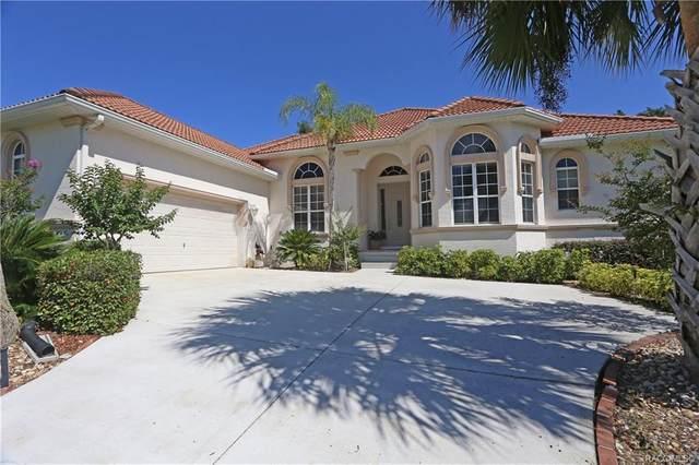 143 W Mickey Mantle Path, Hernando, FL 34442 (MLS #801409) :: Pristine Properties
