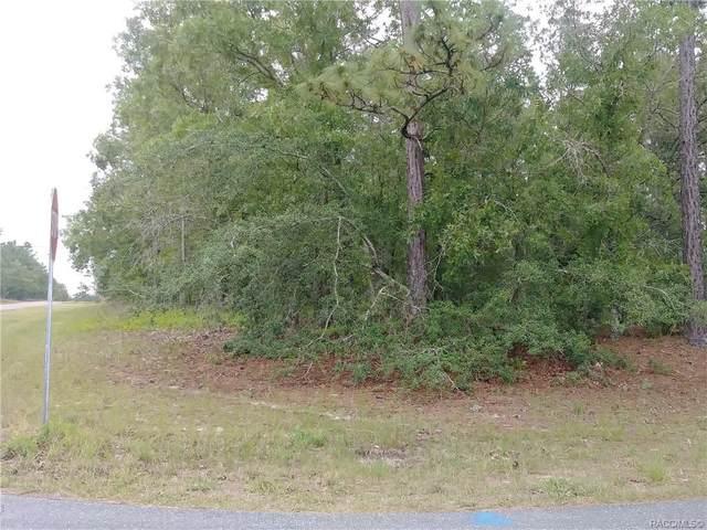 2300 W Elmore Loop, Citrus Springs, FL 34434 (MLS #801413) :: Plantation Realty Inc.